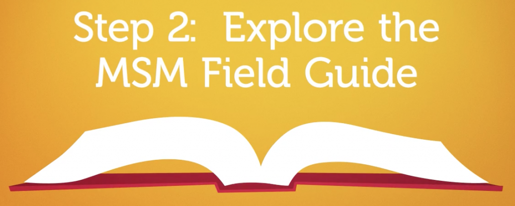 MSM Field Guide Writing